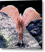 Apricot Wings Metal Print