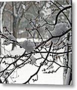 April Snow Metal Print by Kay Novy