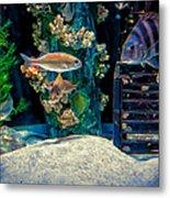Aquarium Art Metal Print