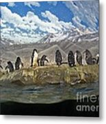 Aquarium Penguins Line Dance Metal Print
