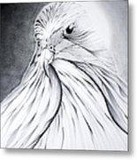 Arabian Falcon Metal Print