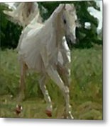 Arabian Horse Abstract Metal Print
