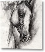 Arabian Horse Drawing 12 Metal Print