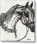 Arabian Horse Drawing 22 Metal Print