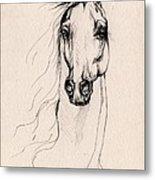 Arabian Horse Drawing 25 Metal Print