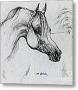 Arabian Horse Drawing 28 Metal Print