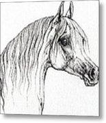 Arabian Horse Drawing 47 Metal Print
