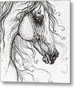 Arabian Horse Drawing 48 Metal Print