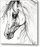 Arabian Horse Drawing 49 Metal Print