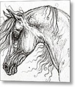 Arabian Horse Drawing 53 Metal Print