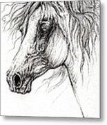 Arabian Horse Drawing 54 Metal Print