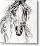 Arabian Horse Drawing 55 Metal Print