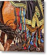 Arabian Native Show Metal Print