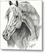 Arabian Stallion Metal Print