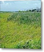 Aransas Nwr Coastal Grasses Metal Print