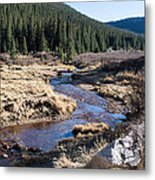 Arapaho National Forest Metal Print