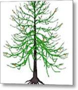 Araucaria Prehistoric Tree Metal Print