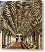 Arbor In Boston Metal Print
