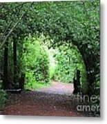 Arched Pathway Metal Print by Melissa Stinson-Borg