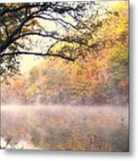 Arching Tree On The Current River Metal Print