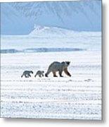 Arctic Family Metal Print