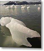 Arctic Ice Floe Metal Print