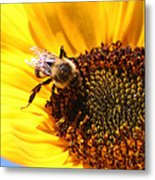 Are You Buzzing? Metal Print