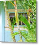 Areca Palms At The Window Metal Print