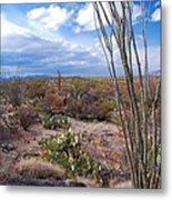 Arizona Afternoon Metal Print