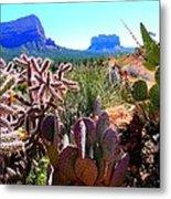 Arizona Bell Rock Valley N4 Metal Print