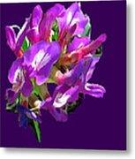 Arizona Desert Flowers Metal Print