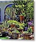Tucson Garden Metal Print