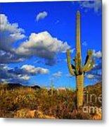 Arizona Landscape 2 Metal Print