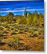 Arizona Landscape Iv Metal Print