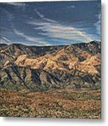 Arizona Lonesome Metal Print