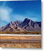 Arizona - On The Fly Metal Print