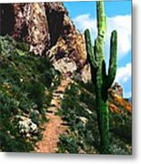Arizona Saguaro Tonto National Monument Metal Print