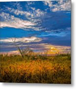 Arizona Sunset 27 Metal Print