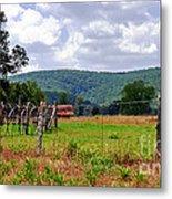 Arkansas Farmland Metal Print