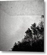 Arkansas Trees Metal Print