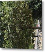 Arlington National Cemetery - 121228 Metal Print