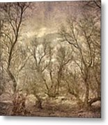 Arms Ghost Forest Metal Print