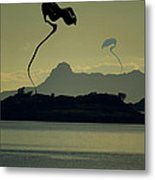 Arrival Metal Print by Anthony Bean