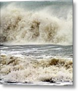 Arrival Of Sandy Metal Print