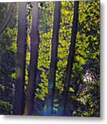 Art In The Woods Metal Print by Donald Torgerson