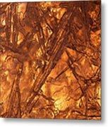 Art Of Ice 4 Metal Print