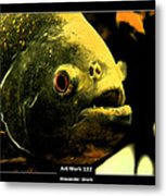 Art Work 132 Piranha Metal Print