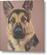 Arthur - German Shepherd Metal Print