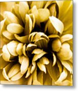 Artificial Flower Metal Print