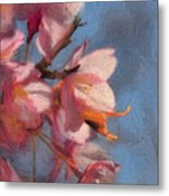 Artisic Painterly Cherry Blossoms Spring 2014 Metal Print